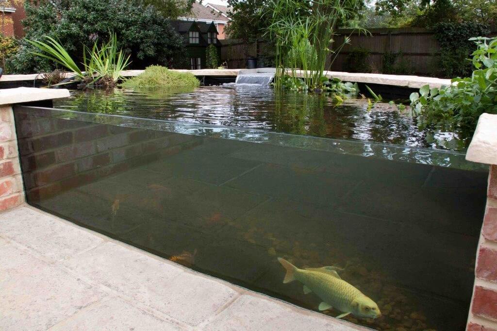 Fish Pond Allder Group